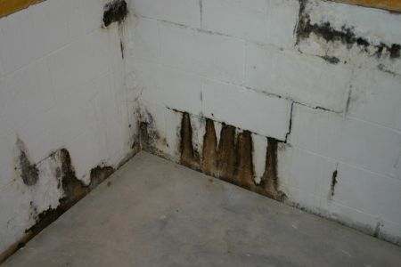 water seepage through block wall